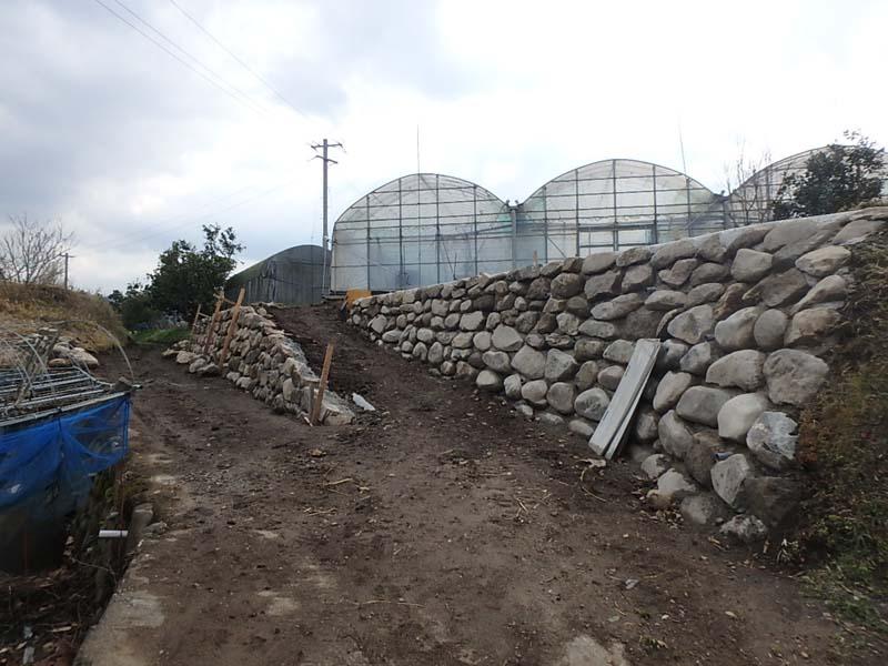 石積 ぶどう農園 進入路