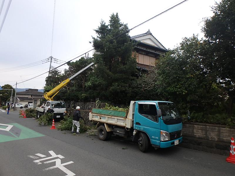 従業員 公共工事 発注 応札 配置予定技術者届 受注 雇用 老舗 庭木 伐採 九電 NTT 樹木 伐採